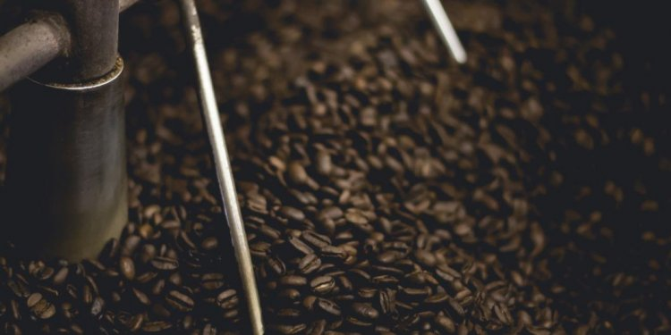 How to choose the best coffee