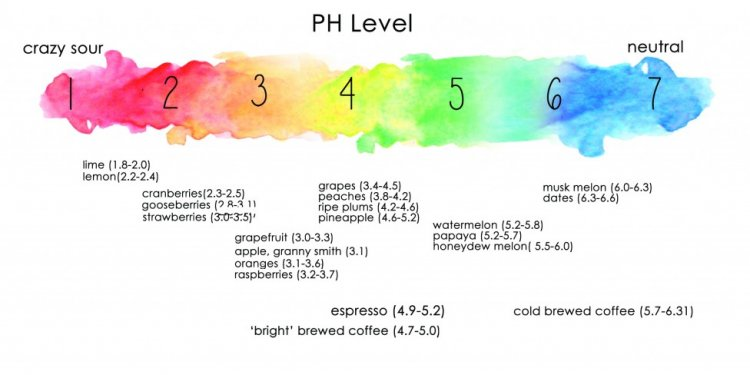 How Acidic Is Your Coffee