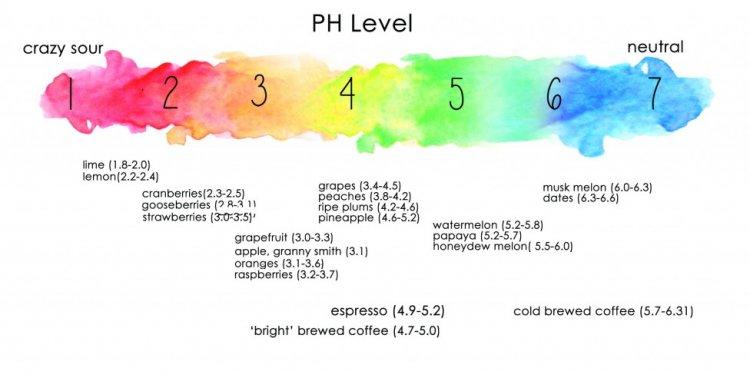 How Acidic Is Your Coffee